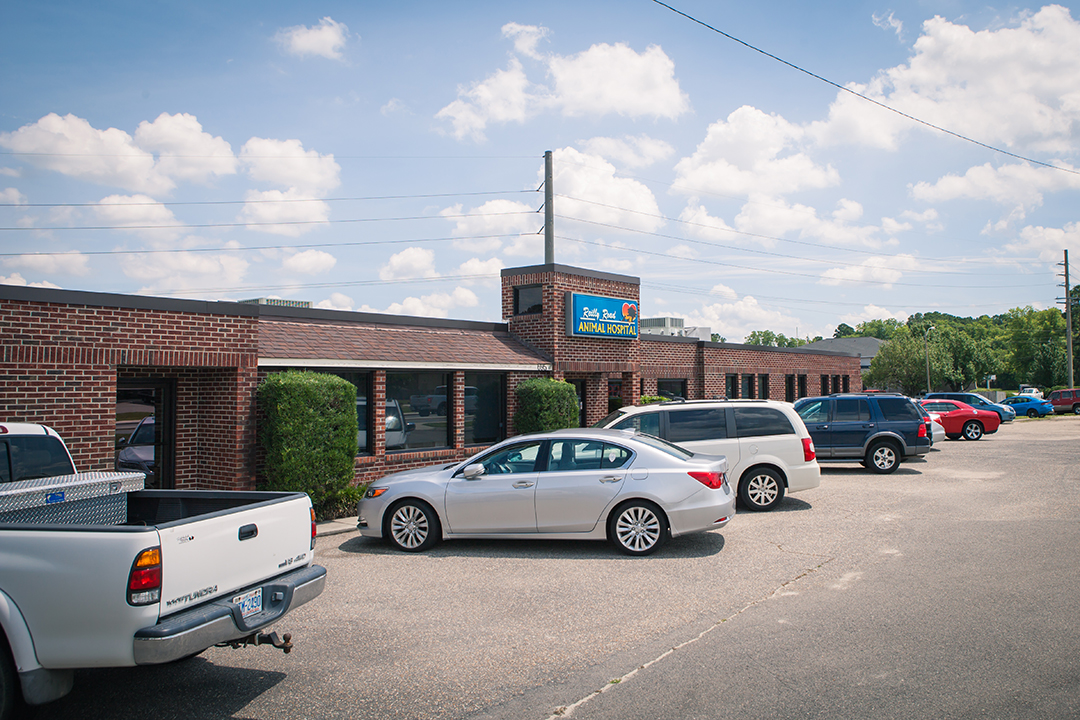 Reilly Road Animal Hospital | Fayetteville, NC 28314 > Home